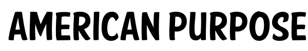American Purpose Casual font preview