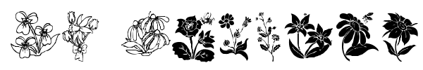 DT Flowers font preview